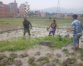 Hard to do ropai in Bhaktapur