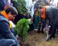 DPM Pokhrel planting saplings