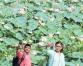 Chitwan's Patihani emerging as tourist hub