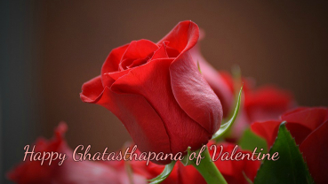 Rose Day: Ghatasthapana of Valentine