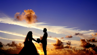 My Dear Bride!