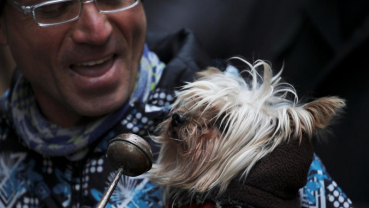 Pets, owners flock to Madrid church for blessing of animals