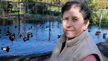 'The ducks have won': French court says they may keep on quacking