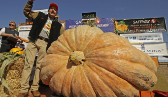 Giant pumpkin weighing 2,175 pounds sets California record