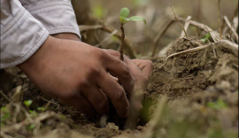 The increasing needs for environmental conservation