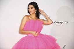 Jenner, Banderas, turn out for glitzy amfAR gala near Cannes