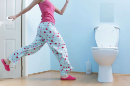 Weird and wonderful toilet facts for World Toilet Day