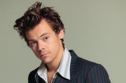 Harry Styles stuck in US due to coronavirus pandemic