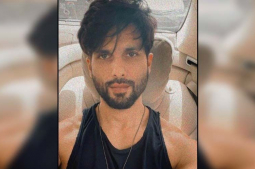 Shahid Kapoor to star in 'full-blown' actioner titled 'Bull'