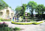 Garden of Dreams (photo feature)