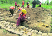 Women fill in for men in quake reconstruction