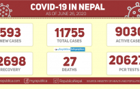 MoHP reports 593 new cases today, Nepal's Covid-19 tally jumps to 11,755 (with video)