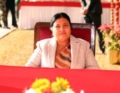 Prez Bhandari urges govt to talk with India to find solution to tarai floods