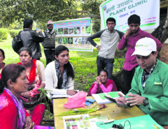 Kavre farmers benefiting from e-plant clinics