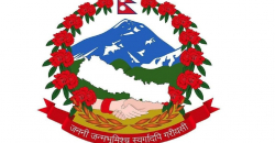 Are Nepal-India relations going to be held hostage to the new national emblem?