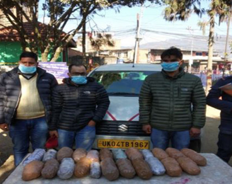 Two Indians, one Nepali held on charge of yarsagumba smuggling