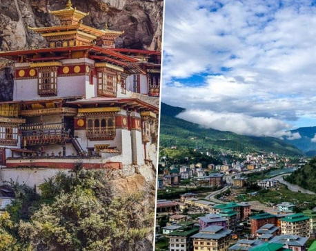 Bhutan bans tourists after first coronavirus case, India total hits 31