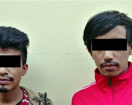 Two arrested on charge of gang-raping teenage girl in bus in Bhaktapur