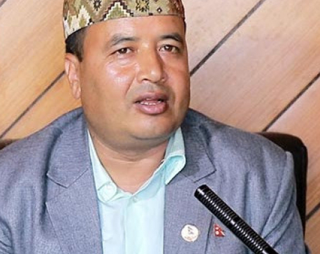 Voices of the opposition should be heard in the parliament: Mahesh Basnet