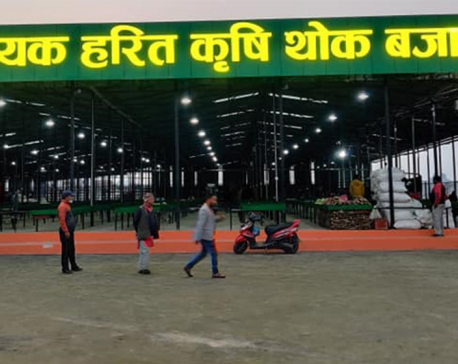 Bhaktapur opens country's largest vegetable market