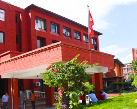 COVID-19 infection in Nepal decreases by 60 percent
