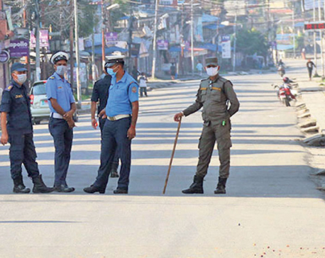 Govt can now impose state of emergency to curb COVID-19, if necessary
