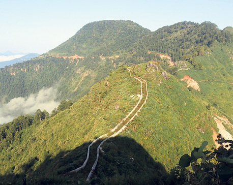 Executive meeting held to popularize mini great wall