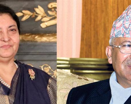 Madhav Nepal holds meeting with President Bhandari
