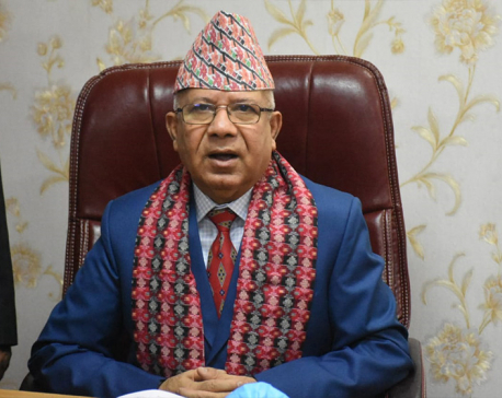 Priority to youth employment as soon as our party joins govt: Madhav Nepal