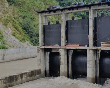 Power generation from Lower Modi hydel project suspended for three weeks