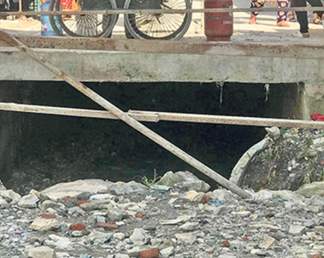 Dead body of boy who fell into a drain at Kapan found in Lalitpur
