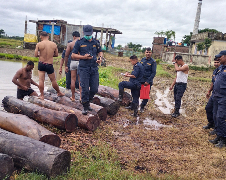 Illegal Sal timber worth Rs 200,000 recovered