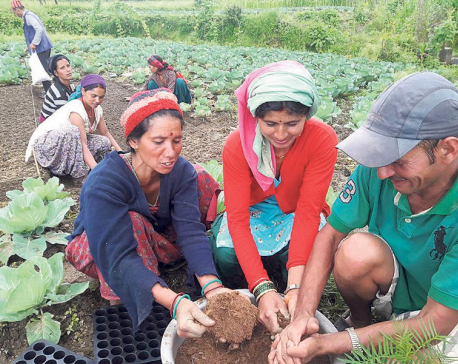 Women-friendly agriculture