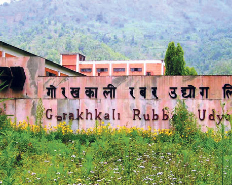 Govt preparing to privatize Gorakhali Rubber