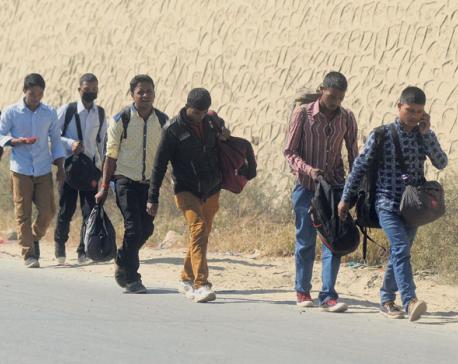 295 detained for vandalism during banda