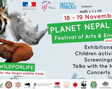 A festival for art and environment