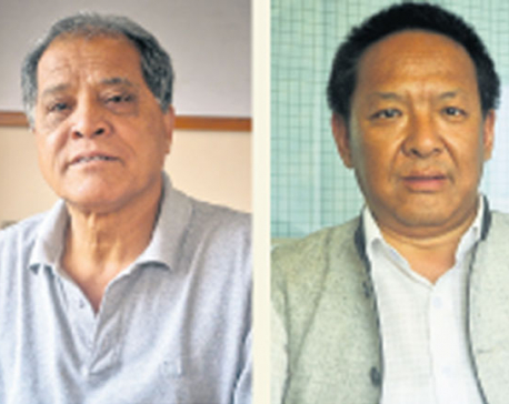 ANFA presidential election today