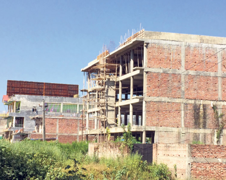 Remittance pouring into real estate, luxuries