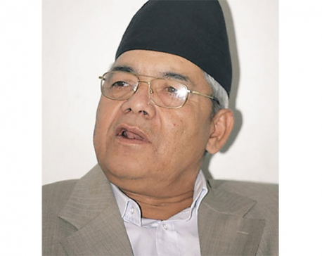 Leader Gautam insists on seriousness for implementation of constitution