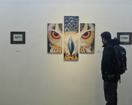 Exhibition on Nepal's birds underway at Nepal Art Council (with photo feature)