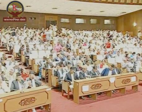 House fails to endorse 2nd statute amendment Bill