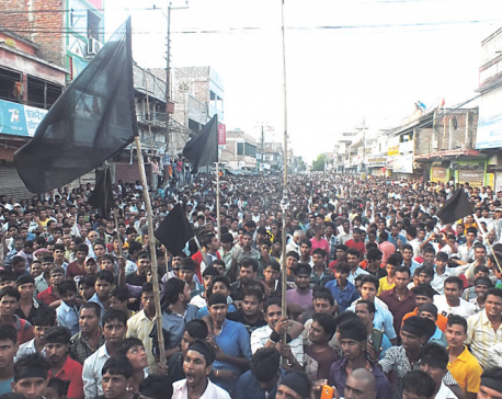 Madhes parties oppose Constitution Day