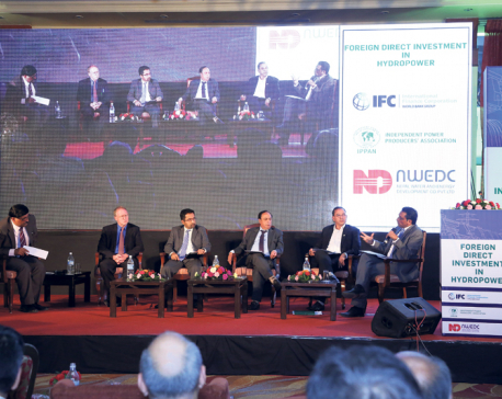 Experts highlight the need for more FDI in hydropower
