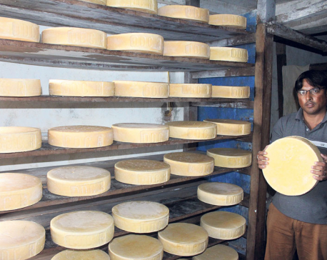 Demand for cheese surges