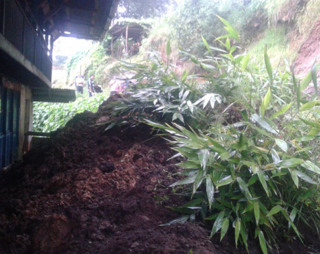 One killed in Taplejung landslide,  dozens displaced