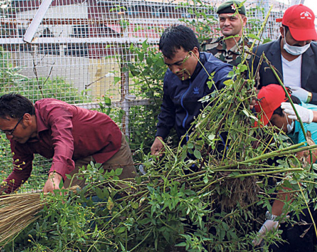 Minister Sripali leads stadium cleanup campaign