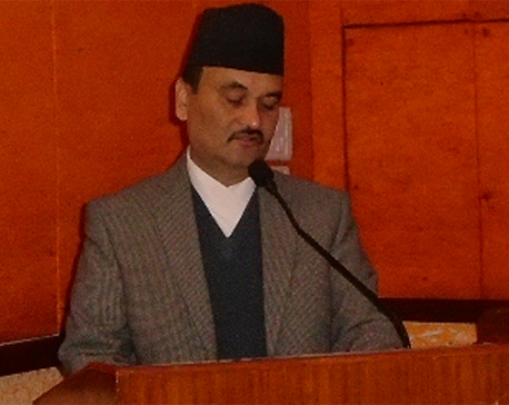 Capital expenditure reaches 11 percent: Chief Secy Subedi