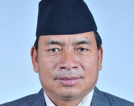 Veep  Pun thanks Nepali people for making local polls a success