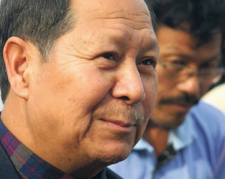 Government change at India's behest: Bijukchhe