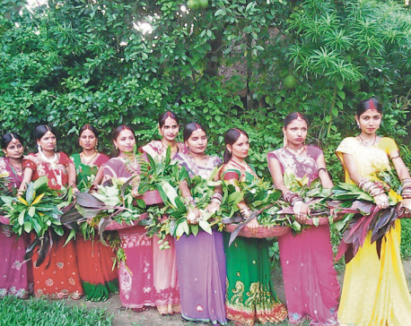 Women in Mithila celebrating Madhushravani